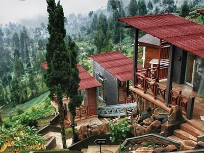 Bromo Hotel Bromo Cottages jardins